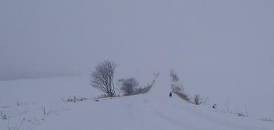 2009年、冬、調教中